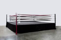 EVANDER HOLYFIELD HOME BOXING RING