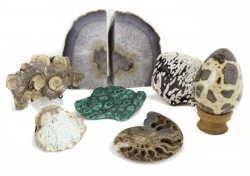 GROUP OF ASSORTED GEODES AND FOSSILS