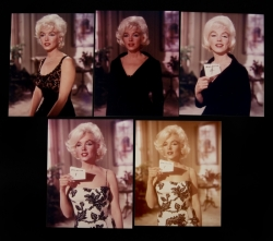 MARILYN MONROE HAIR TEST PHOTOGRAPHS