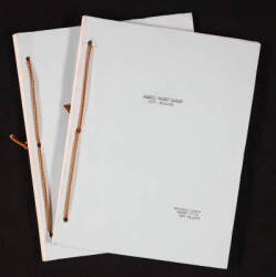 ZORRO TELEVISION PROGRAM SCRIPTS