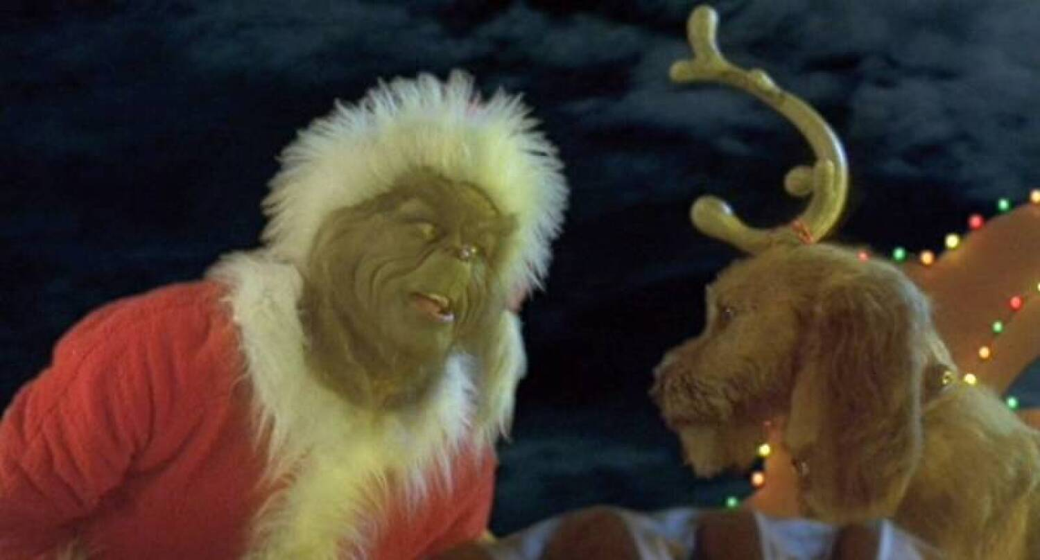 Grinch Stole Christmas Dog.How The Grinch Stole Christmas Max S Antler Price Estimate