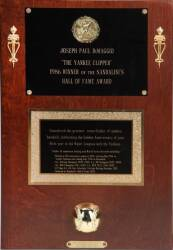 JOE DiMAGGIO TROPHY PLAQUE