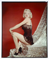 MARILYN MONROE TRANSPARENCY